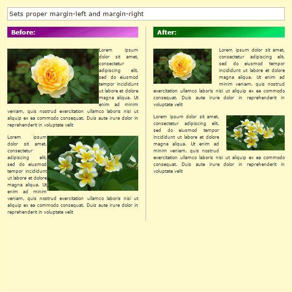 RFI-helper - Responsive Floating Images Screenshot 3