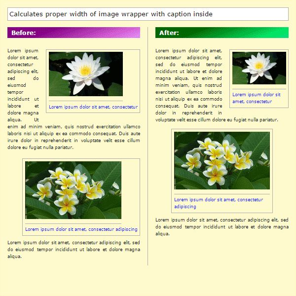 RFI-helper - Responsive Floating Images Screenshot 4