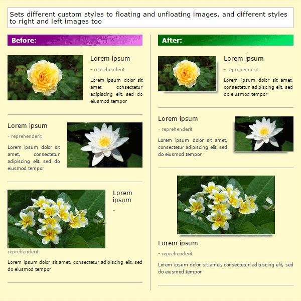 RFI-helper - Responsive Floating Images Screenshot 5