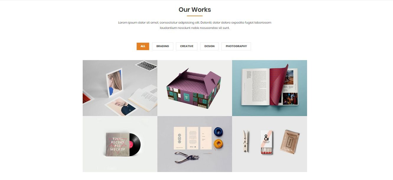 NANDINI - One Page Business html Template Screenshot 3