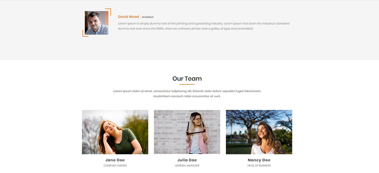 NANDINI - One Page Business html Template Screenshot 4