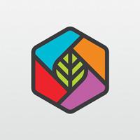 Leaf Box Logo