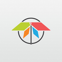 Colorful Abstract Dragonfly Logo