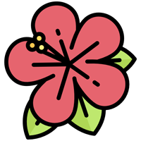 Flower Delivery - Android App Source Code