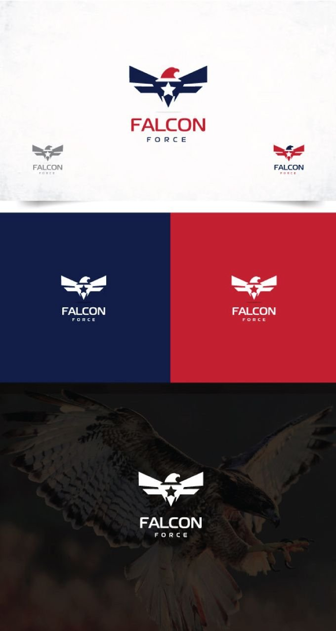 Falcon Logo Screenshot 1